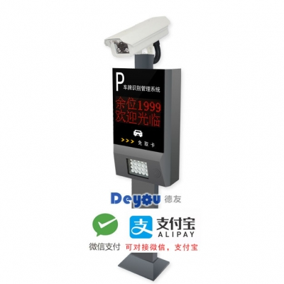 DEY-FKP10 两行屏 车牌识别